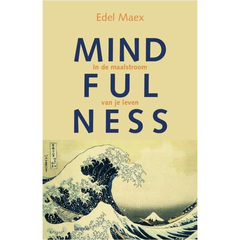 Mindfulness - in de maalstroom van je leven